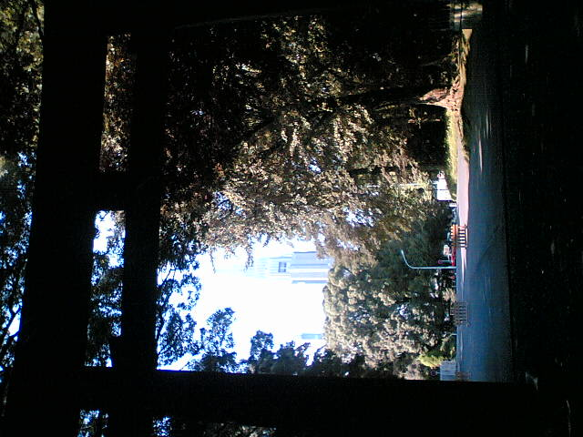 神宮と新宿