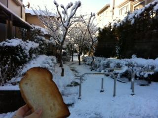 初積雪模様