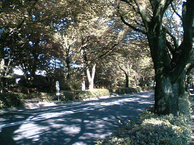 武蔵野モーニング