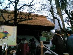 Jindaiji_1